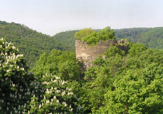 The Old Castle in May-time greenery.