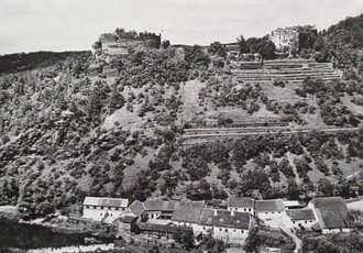 View of the castle from the east, on the southern slops terraces planted with vineyards, with the mill building at the river, first half of the 20th century.